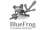 BlueFrog Cleaning Services Ltd logo